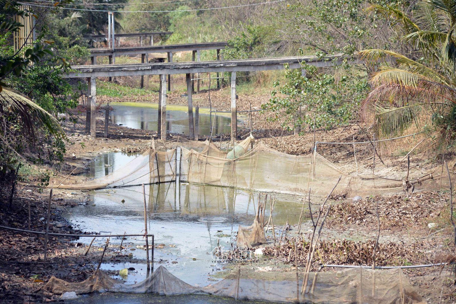 Các kênh, rạch trên địa bàn huyện Gò Công Đông (Tiền Giang) đều cạn trơ đáy do hạn hán, xâm nhập mặn.
