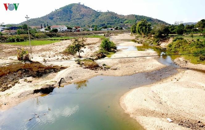 Cụ thể, trong tổng số 240 hồ chứa đơn vị quản lý vận hành thì chỉ có 26 hồ có mực nước dâng bình thường so với thiết kế; 71 hồ ở đạt mực từ 70 đến 90%, 142 hồ đạt 50 đến 60%, còn lại đã cạn trơ đáy.